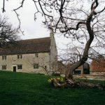 درخت نیوتن با نمای خانه قدیمی وی