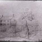 نقاشی از درخت جاذبه